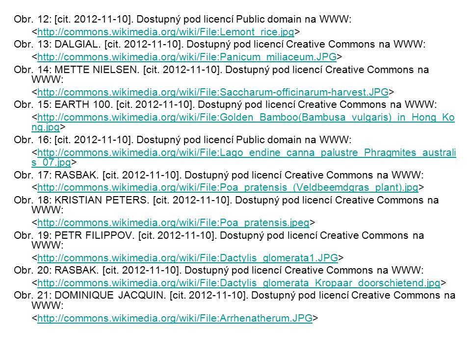 Obr. 12: [cit. 2012-11-10]. Dostupný pod licencí Public domain na WWW: